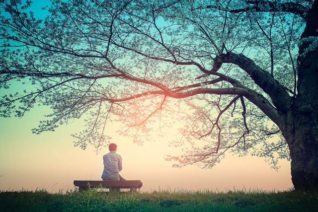 Male teenager Sitting alone on a bench in the park under a tree .